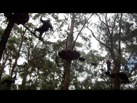 Tree Top Adventure Park - Newcastle - Black Ropes Course