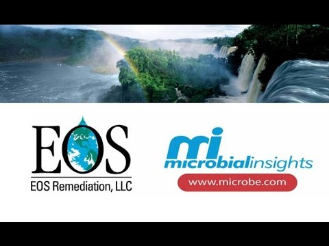 Innovative Remediation Options & Molecular Biological tools for Performance Monitoring