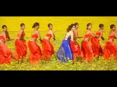 Student No 1 Tamil Movie   Songs   Sherin dreams about Sibi   Kadalora Kavithai Song