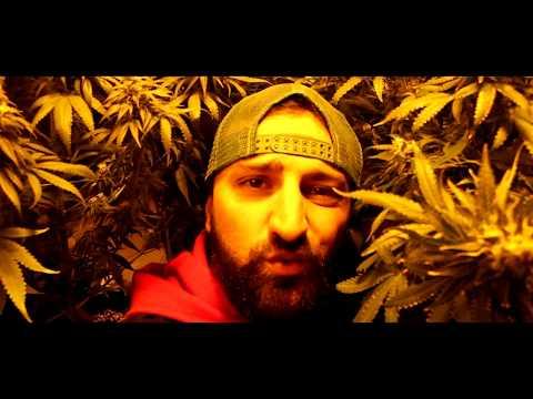Nikko ✖️ LEGALIZE IT ✖️ [ official video ]