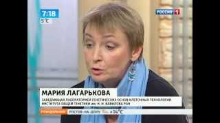 Эксперт: если закон о лечении стволовыми клетками будет принят, Россия отстанет навсегда(, 2013-04-22T14:45:27.000Z)