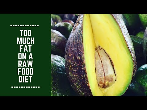 Too Much Fat on a Raw Food Diet