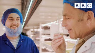 Can indoor farms solve the future's food crisis? | 7.7 Billion People and Counting - BBC