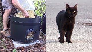Community Cat Home Improvements 😻
