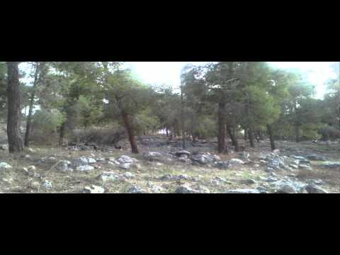 Neve Shalom -Israel