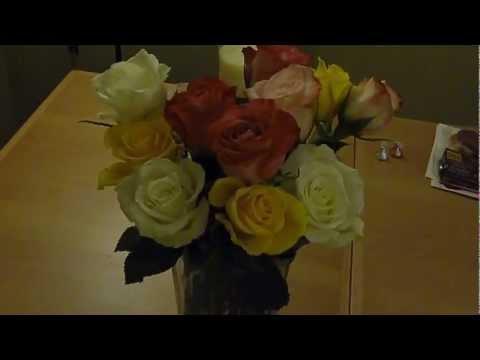 Proflowers One Dozen Rainbow Roses For 19 99 On Valentines 2013 Feb 14th