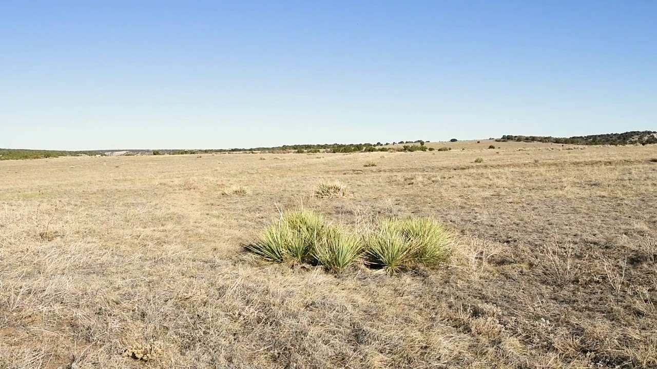 0.48 Acres – In Colorado City, Pueblo County CO