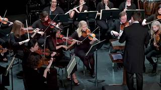 Franz Schubert- Symphony No  6 in C major, D  589 | Vitam Musica Chamber Orchestra
