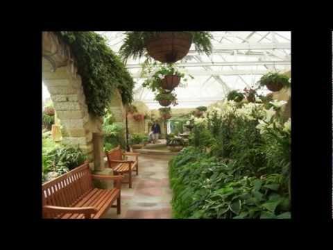 Botanical gardens, Hobart.