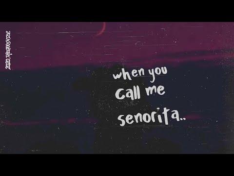 Shawn Mendes & Camila Cabello – Señorita (Lyrics)