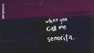 Download lagu Shawn Mendes & Camila Cabello - Señorita (Lyrics)