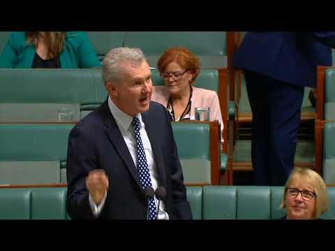 Dutton's harmful citizenship bill rejected by the Senate - TONY BURKE