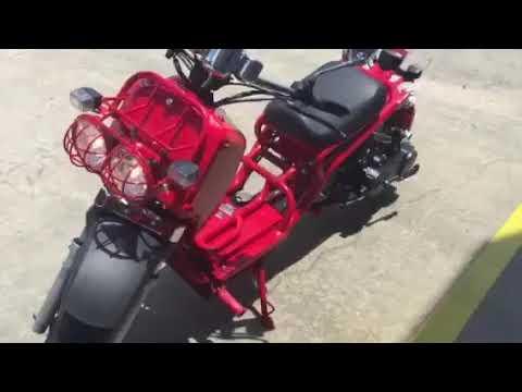 Pitbull 50cc Lowered Custom Ruckus Clone
