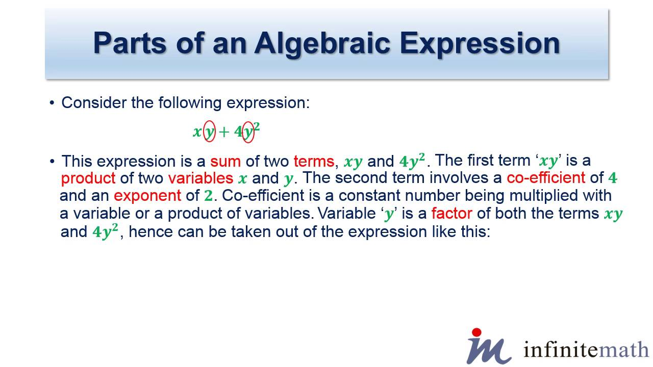 worksheet Algebraic Expression parts of an algebraic expression youtube
