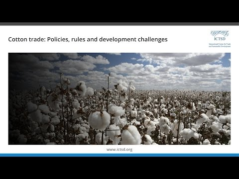 Cotton trade: policies, rules, and development challenges
