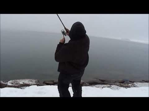 GIANT LAKE TROUT FISHING (FLATHEAD LAKE MONTANA)