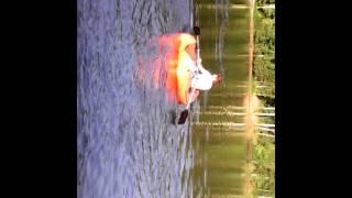 Обрезаная лодка
