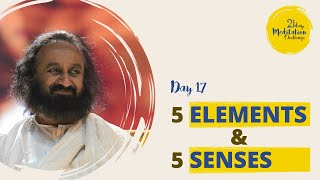 5 Elements & 5 Senses | Day 17 of the 21 Day Meditation Challenge with Gurudev