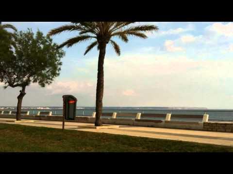 Wonderful Harbour of Palma de Mallorca - Ocean Drive - Platja