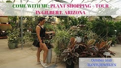 Come with me: Plant shopping + tour | Gilbert, Arizona | October 2018 | ILOVEJEWELYN