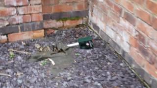 Ultrasonic Pest Deterrent: Cat Poo Update