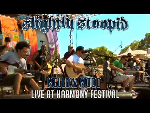 Mellow Mood (Acoustic) - Slightly Stoopid (Live at Harmony Festival)