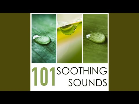 Soothing Sounds 101 - Healing Nature Music to Sleep Well Through the Night