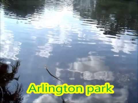Arlington park sarasota Florida