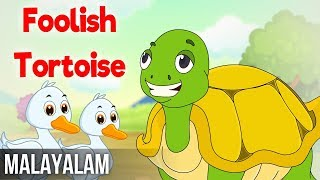 Foolish Tortoise   Panchatantra Stories In Malayalam   Magicbox Stories