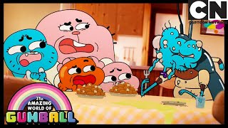 What's Gumball Turned In To Now?| The Box | Gumball | Cartoon Network