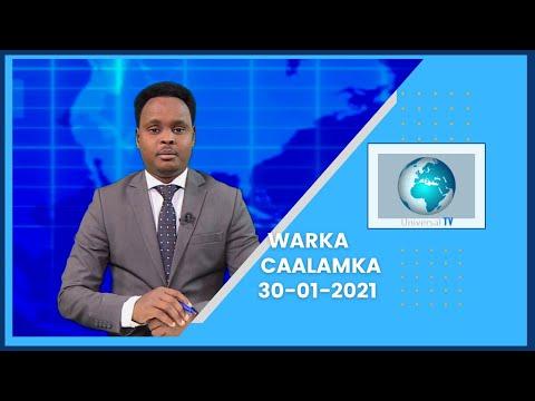 Warka Universal TV 30 01 2021
