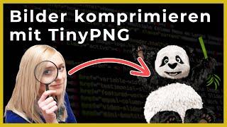 🆕 Bilder komprimieren mit TinyPNG - OnlineDurchbruch.com
