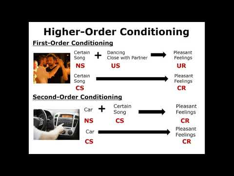 Classical Conditioning: Higher-Order Conditioning