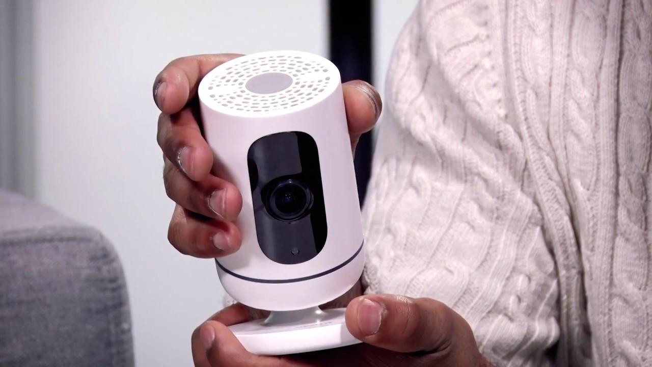 Vivint Ping and Doorbell Cameras