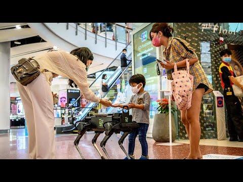 Tayland'da alışveriş merkezine konulan robot köpek, müşterilere el jeli dağıtıyor