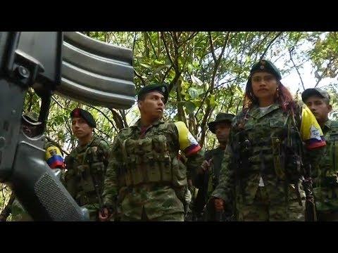 FARC rebels' disarmament on track, according to UN