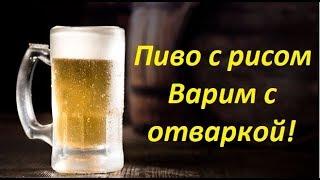 Пиво с рисом -