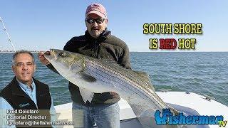 October 17, 2019 Long Island Metro Fishing Report with Fred Golofaro