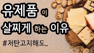 치즈, 우유, 버터를 먹어도 살이 빠진다며?! [카니보…