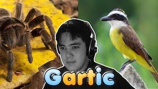 Gartic - EU DESENHO MUITO!