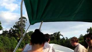 Monkey River Boat Ride Belize