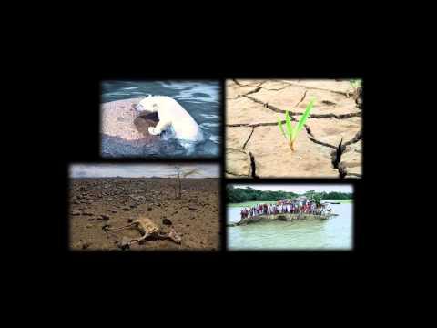 기후변화를 위한 작은 제안 - 에코캐시/ The small suggestion for climate change - Eco cash