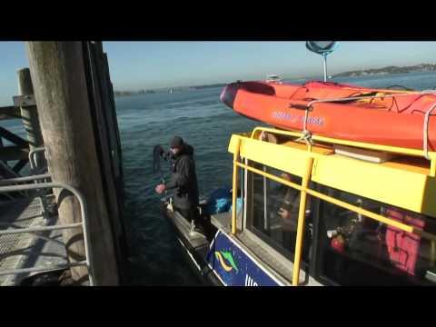 Ocean300 and Waitemata Harbour Clean-Up Trust