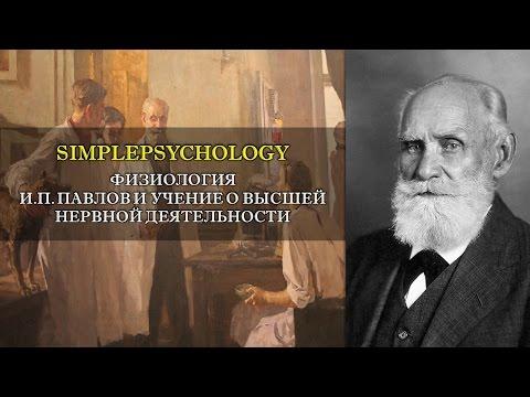 Физиология. И.П. Павлов и учение о высшей нервной деятельности.