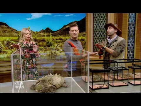 """Brave Or Afraid"" With Coyote Peterson"
