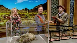 """""""Brave or Afraid"""" with Coyote Peterson"""