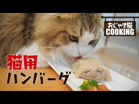 猫用ハンバーグを作ったら待ちきれない猫が侵入を繰り返しました