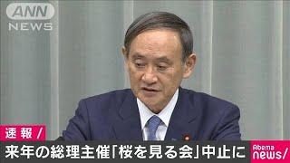 来年の総理主催「桜を見る会」を中止に 菅官房長官(19/11/13)