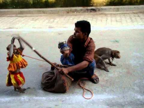 Indian Monkey Dance