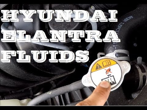 How To Check Fluids In Hyundai Elantra 2010 2016 Maintenance